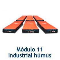 modulo11