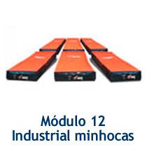 modulo12
